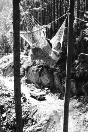In 1988 during the campaign to stop Fletcher Challenge from building a logging road in Sulphur Passage, protesters strung hammocks and suspended themselves above areas where road builders planned to blast.