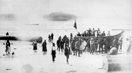 Potlatch at Opitsat in 1916. Though banned by the government in 1884, potlatches continued. Here Tla-o-qui-aht people carry guests in their large canoe up the beach at Opitsat, while drummers beat out a welcome. Potlatches took place during the winter months to celebrate important events with feasting, storytelling and gift-giving.